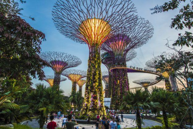 Летняя языковая программа с Look Asia Holidays Singapore и MDIS 2019