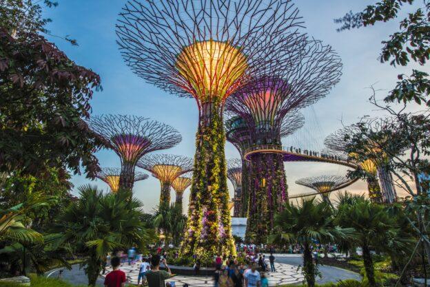 Туристи в Сінгапурі зможуть скористатися спеціальним проїзним — IATA